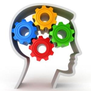 wisdom brain